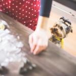 Doświadczenia ponad rzeczy – niematerialne prezenty