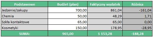 Budżet domowy - Wydatki Podstawowe