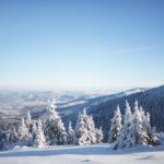 Jak wytrwać w noworocznych postanowieniach?